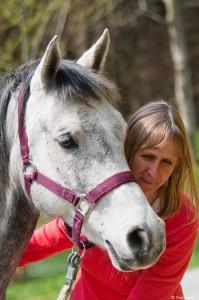 Fühlen und hineinspüren, Craniosacrale Therapie, Energiearbeit, Cranio für Pferde